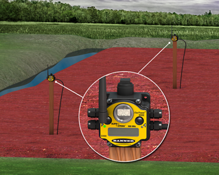 Frost Protection and Soil Moisture Control in Cranberry Bogs