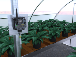 Greenhouse Temperature and Humidity Monitoring